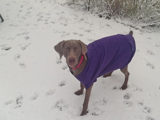 Jorja First Snow Dec 2012