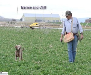 Wuz that a birdy??? Where'd it go Cliff????