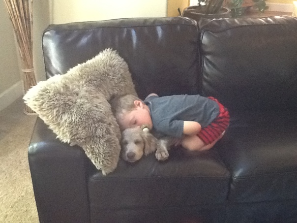 Napping with my best friend