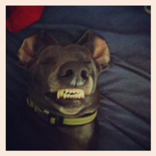 I smile pretty