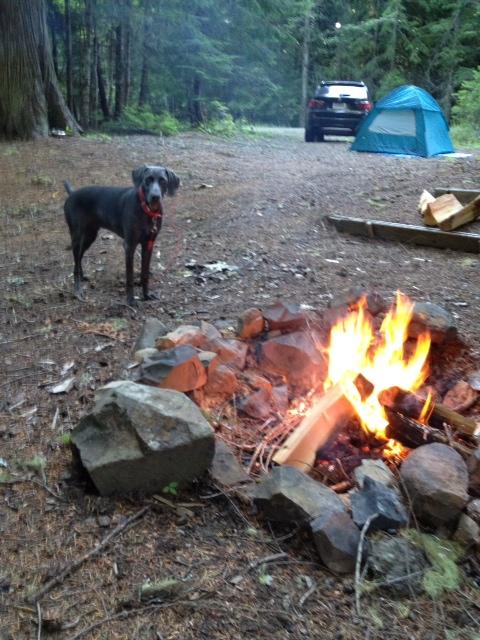 George_camping