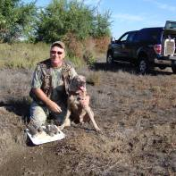 Cooper's First Dove A