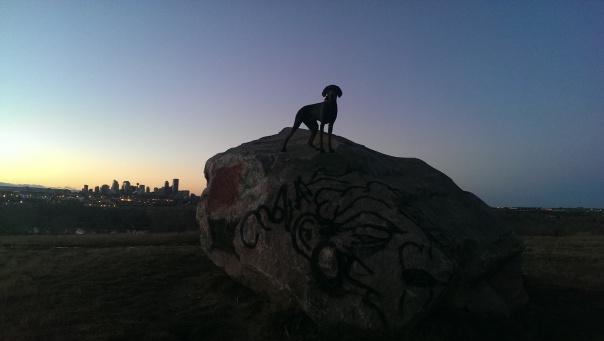 Oscar Climbs