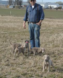 Cliff with LH Pups_9092