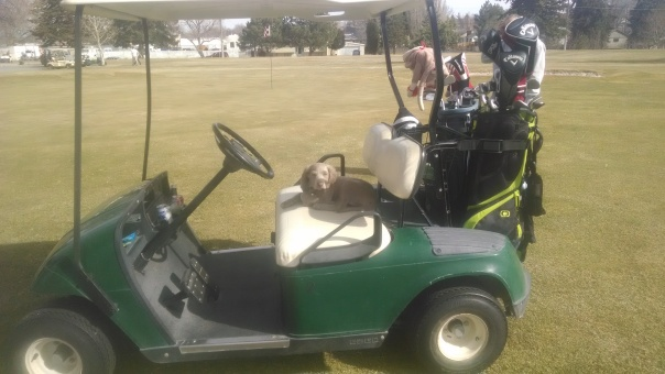 Golfing Weimar