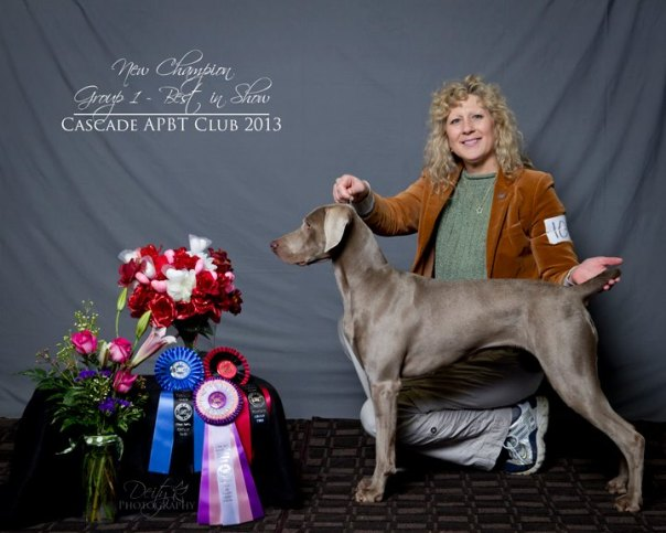 Willow takes Best of Show