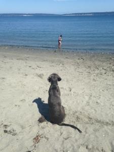 Beach Duty