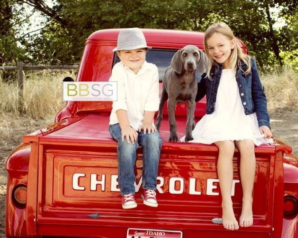 Daisy and Vintage Chevy Truck