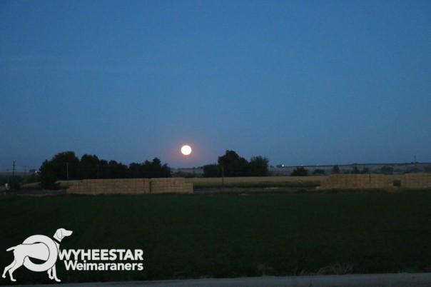 harvest-moon-sept-16-2016