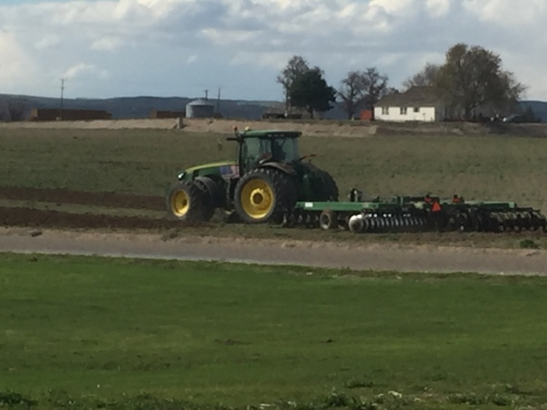 Farmwork_5397