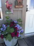 Front Entry Flowers_5885