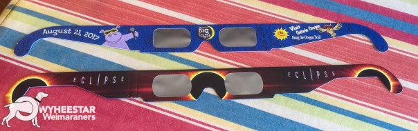 Lenses for the Total Eclipse