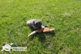 2-Mesquite X Stackhouse 2016 5Wk Yard