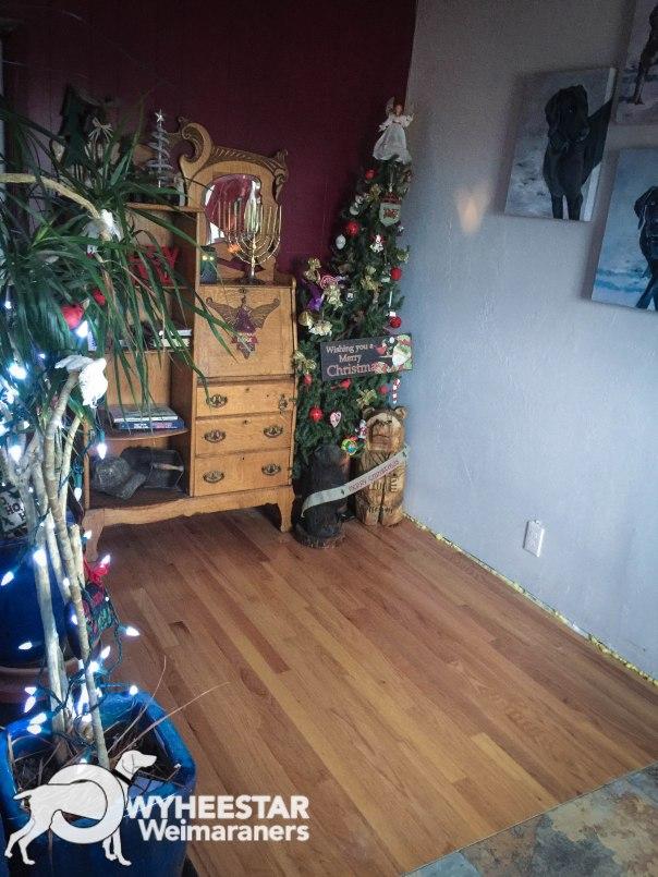 Christmas 2017-2