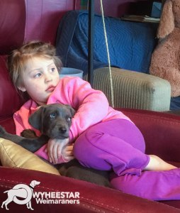 Evie and River with Puppy-18